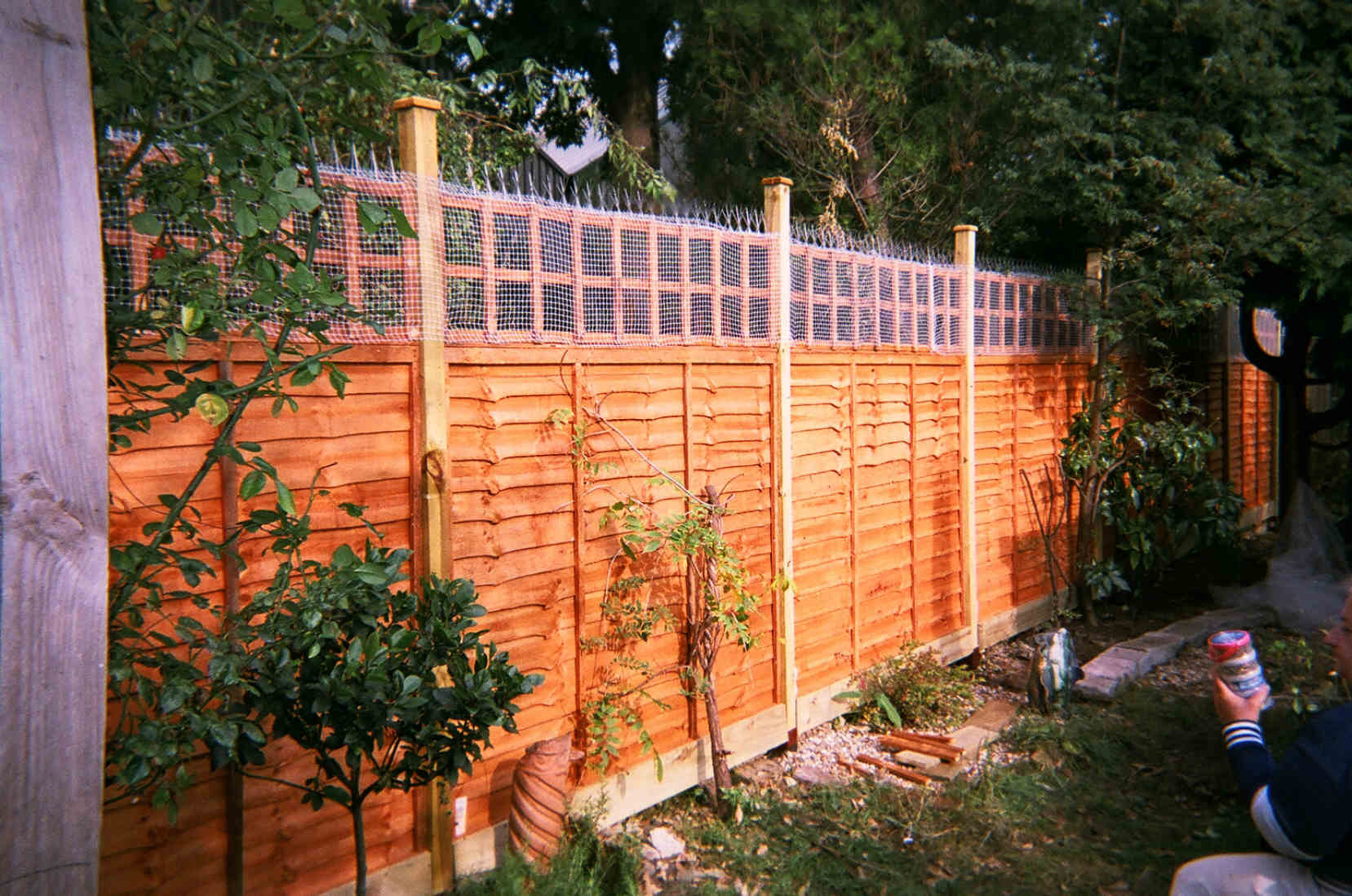 Build A Garden Fence - Low Cost Ideas - EzineArticles Submission